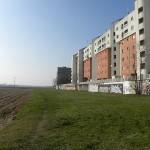 Con il nuovo P.G.T. Milano sarà più verde? 5 domande all'assessore Masseroli