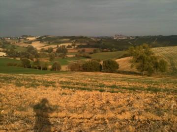 Le sette tesi dei Colloqui di Dobbiaco 2012